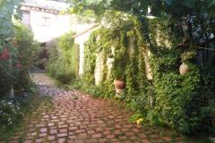 Jardin-verano-scaled